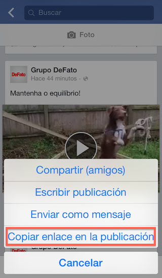 2 - Descargar videos Facebook - Instagram - iPhone - Copia el enlace del video - 2